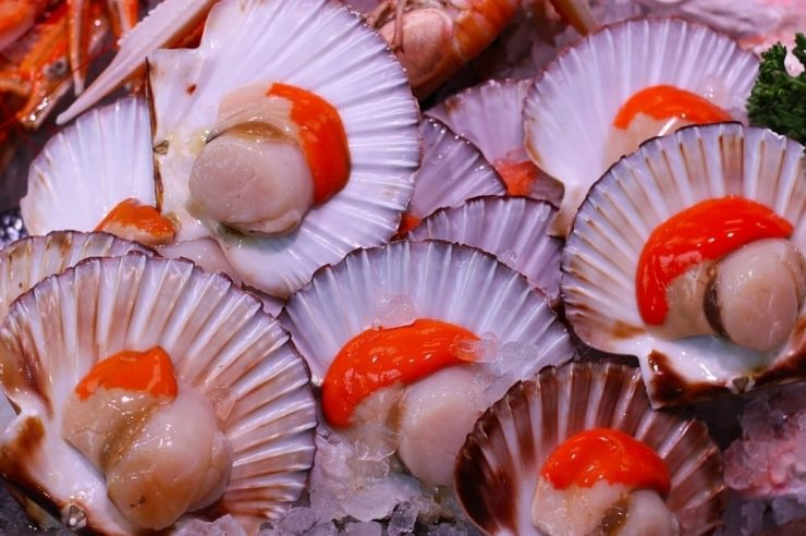 IBM Blockchain Raw Seafoods Scallop