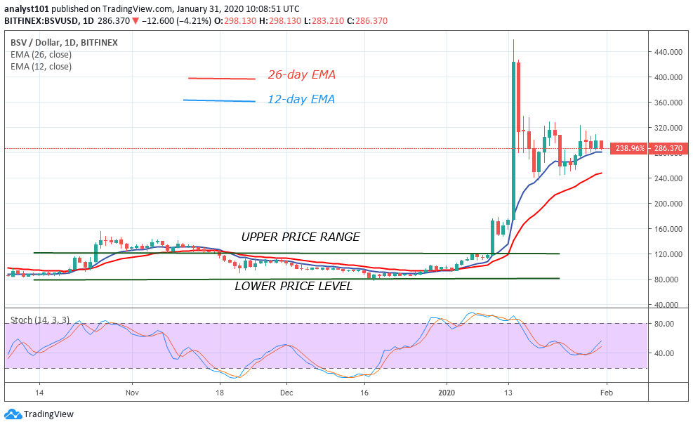 BSV/USD - Daily Chart