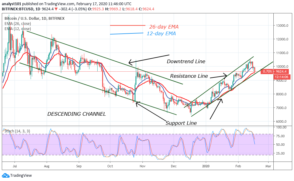 BTC/USD – Daily Chart Source: Trading View