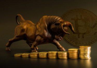 Bitcoin bulls