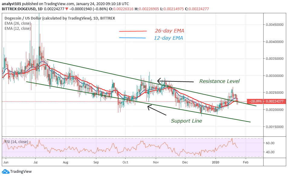 DOGE/USD - Daily Chart