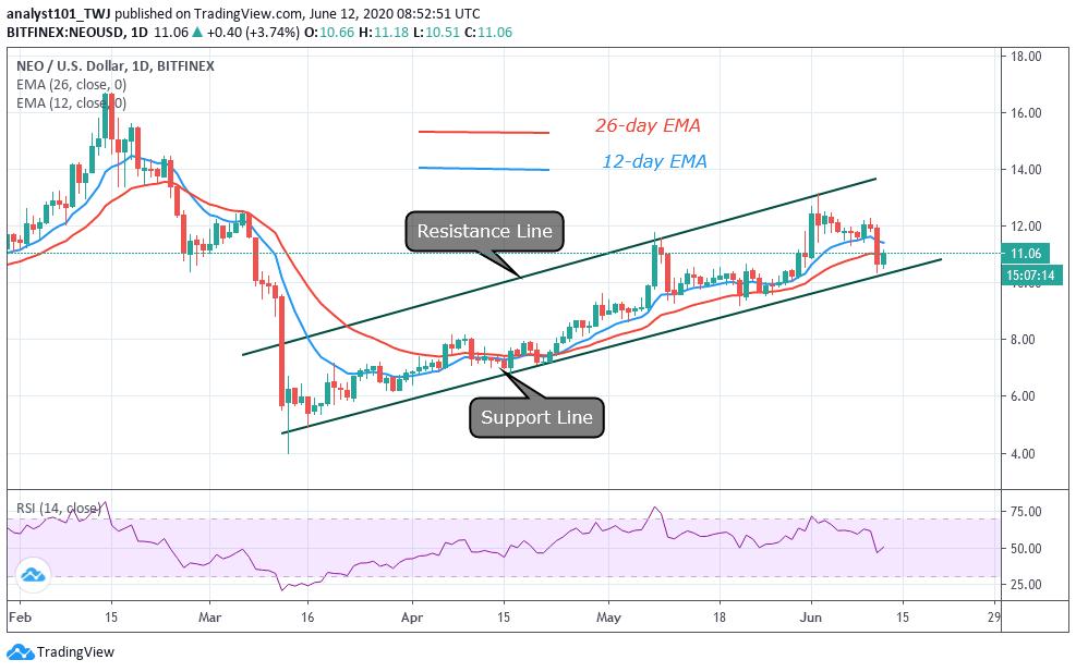NEO/USD - Daily Chart