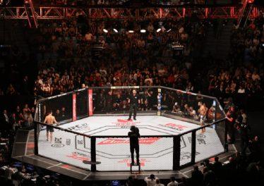 UFC fan token
