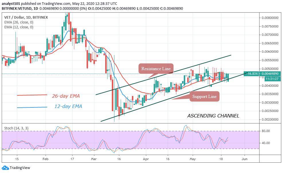 VET/USD - Daily Chart